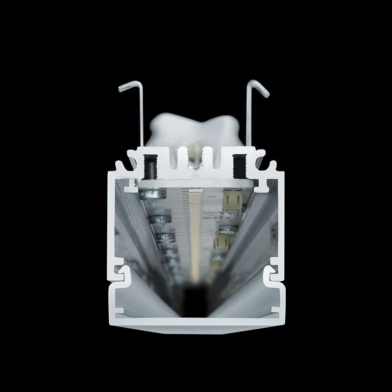System40 Public - Querschnitt
